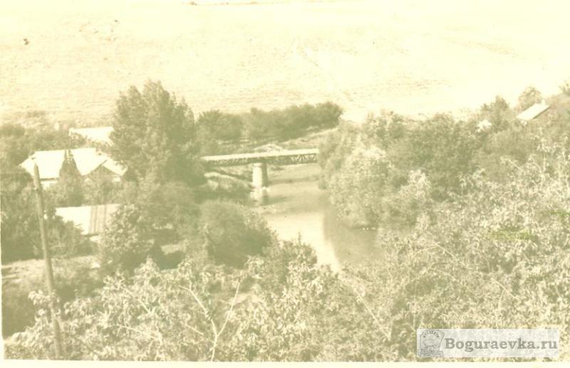 Мост к лесу